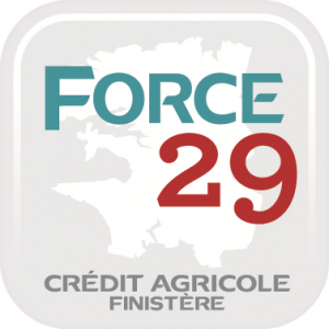 force29